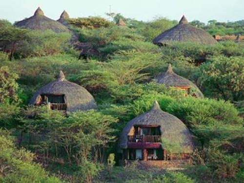 Почивка в Танзания - хотел Serengeti Serena Safari Lodge - Серенгети 4•