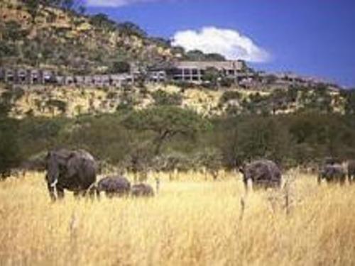 Почивка в Танзания - хотел Serengeti Sopa Lodge - Серенгети 4•