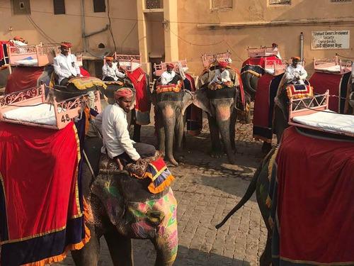 Екскурзия Индия - Златният триъгълник - 7 дни